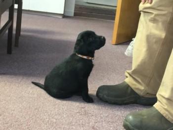 Harley Visiting TC Office